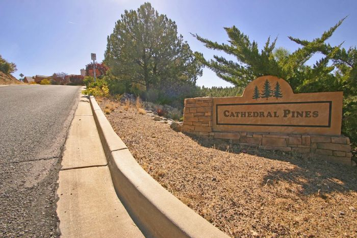 Cathedral Pines community image